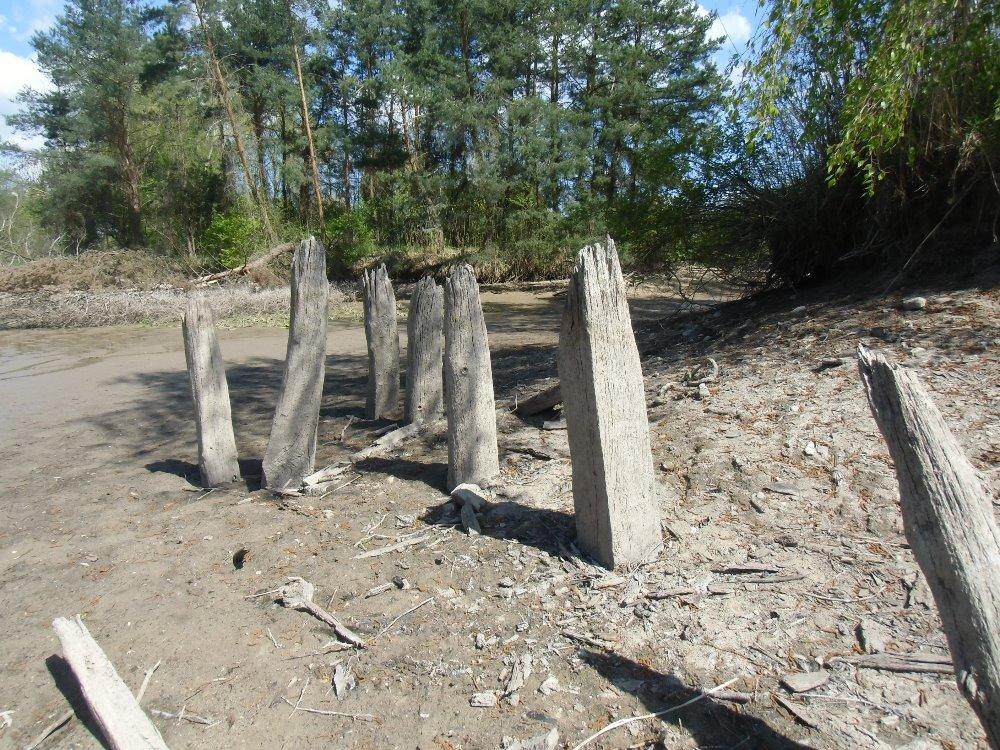 Zbytky pilířů ještě před jejich vytažením z bahna na jaře 2016. Foto I. Vaňousek